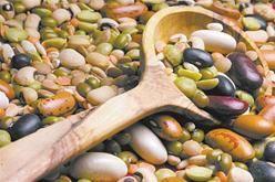 Дев`яностоденного дієта роздільного харчування