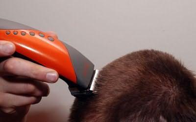 як підстригти чоловіка машинкою будинку