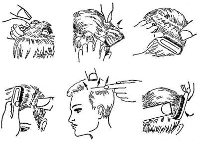 На схемі зображено розташування щітки і фена на різних ділянках голови.