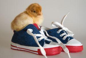 Взуття на шнурках - по ніжці малюка, але одягати її не дуже зручно